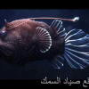 سمكة الصنارة – سمكة الشص
