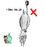 طريقة تركيب الطعم بالشكل الصحيح – الحبار( السبيط ) R05