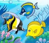 طرق عمل عقد الصيد – ثلاثة طرق مختلفة لربط الصنار(السنارة – الهوك -الميدار)