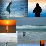 مجلة مدونة صياد السمك – العدد الثاني