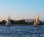 أسماك نهر النيل و الطعم المفضل أستخدامة فى صيدها و كذلك رقم الشعر و السنار المناسب فى الصيد