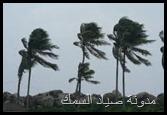 الرياح